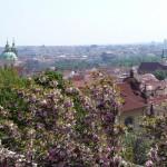 Погода в Праге в апреле 7