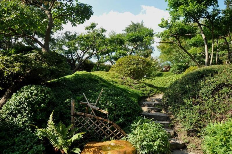 Ботанический сад 6