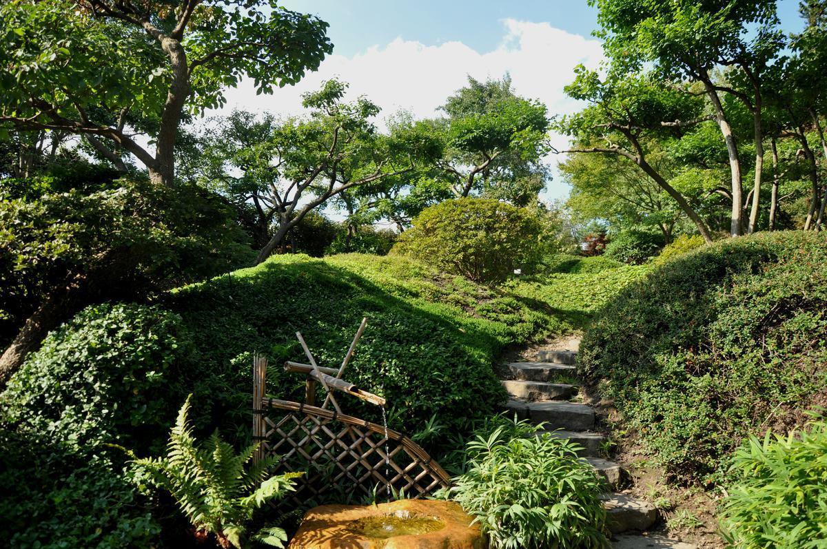 Ботанический сад — botanická zahrada