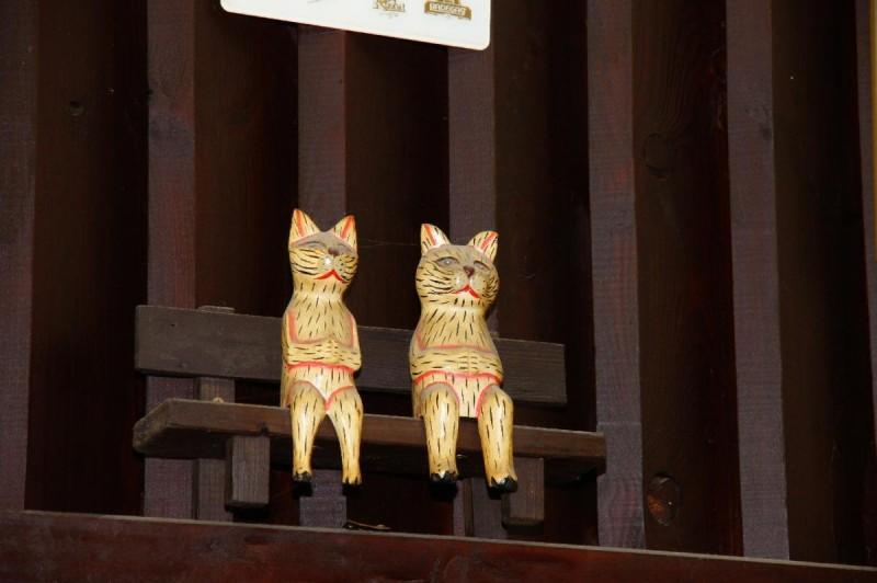 У двух кошек - кошки