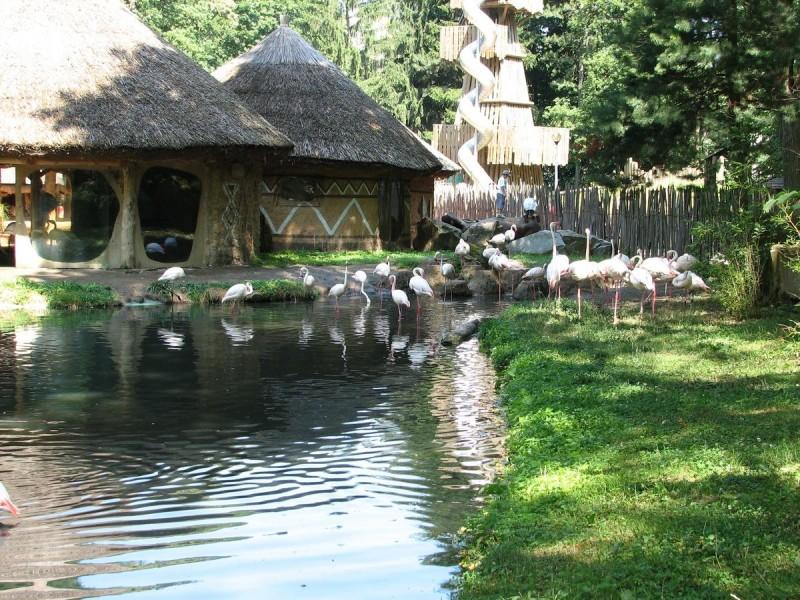 Зоопарк Йиглава
