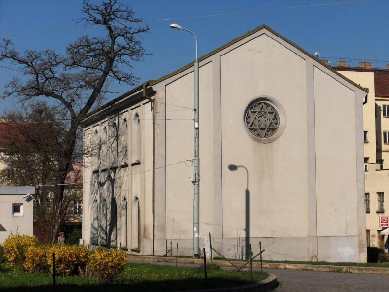 Новая синагога 2