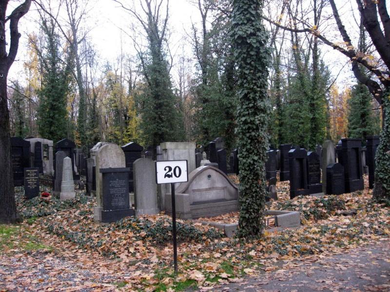 Новое еврейское кладбище 10