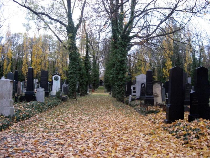 Новое еврейское кладбище 8