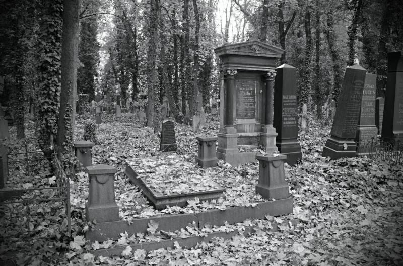 Новое еврейское кладбище