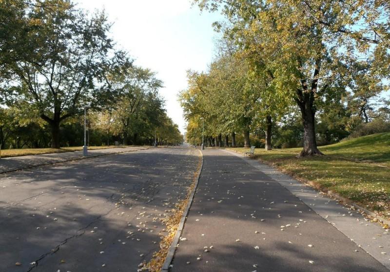 Парк Витков 10