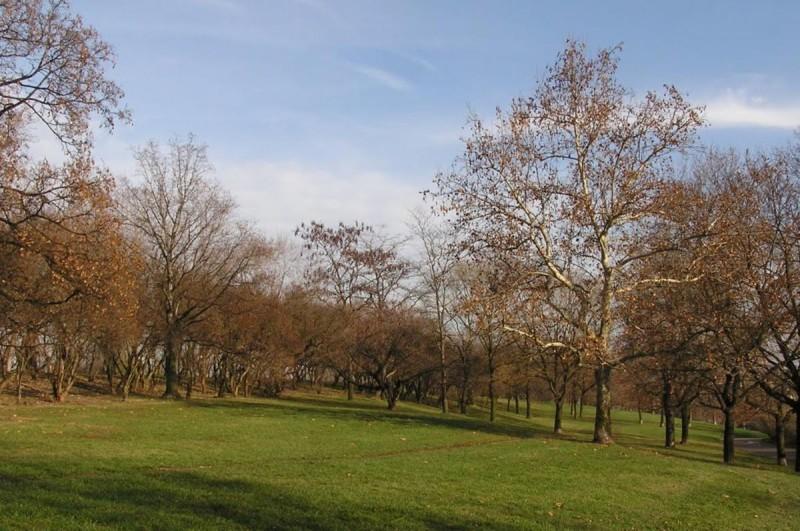 Парк Витков 3