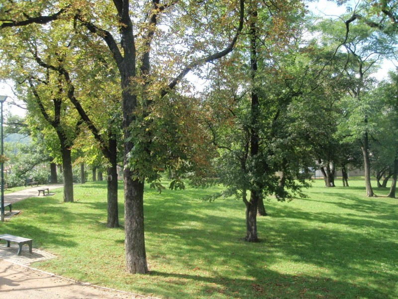 Парк Сакре-Кер 8