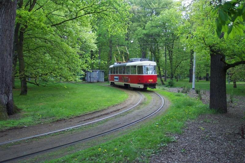 Парк Стромовка 4