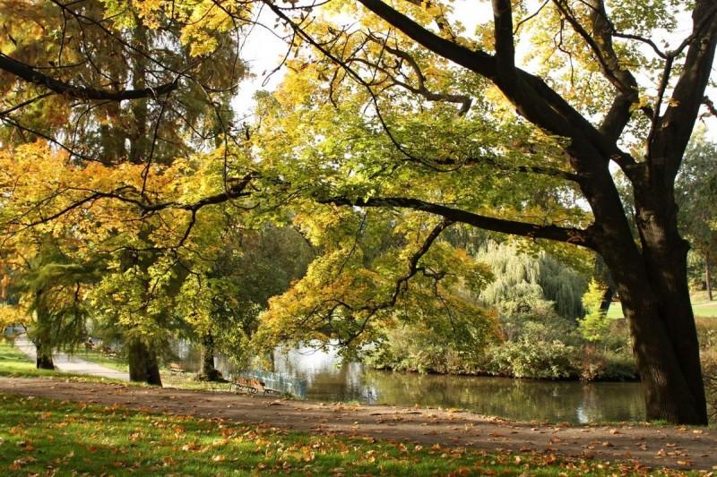 Парк Стромовка 8