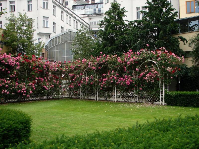 Франтишканский сад 8