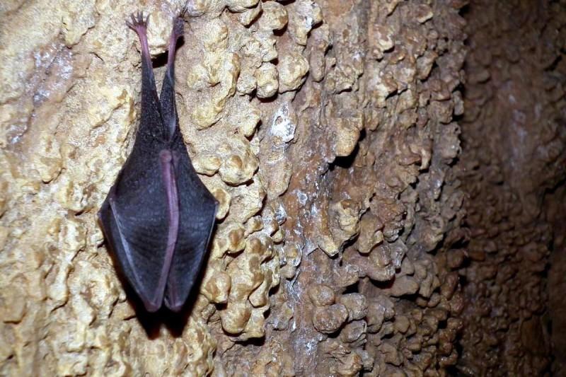 Яворжичские пещеры 7