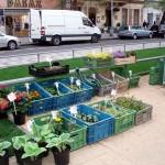 Фермерский рынок на Тыловой площади 5