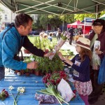 Фермерский рынок на Jiriho z Podebrad 2