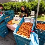 Фермерский рынок Naplavka 5
