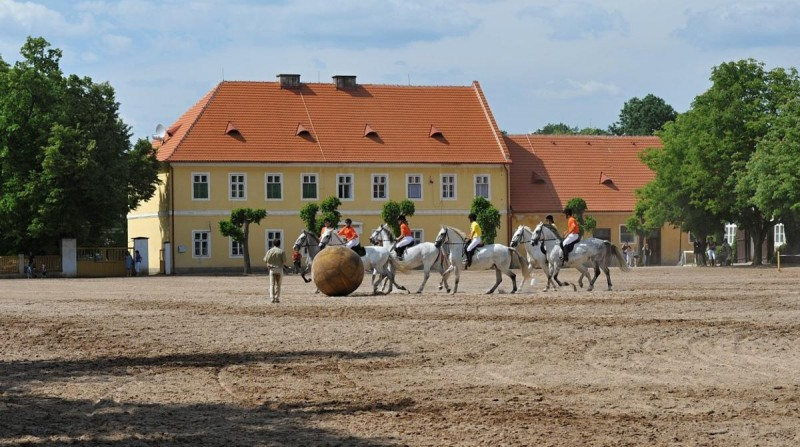 Конюшни Кладрубского замка
