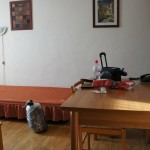 Отель Rezidence Vitkova 1