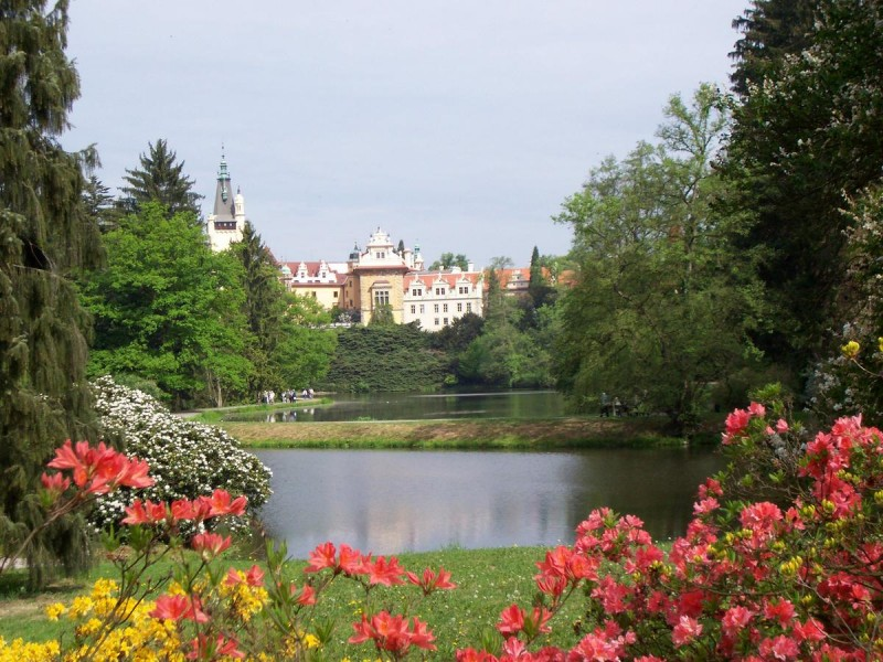 Пругоницкий парк 1