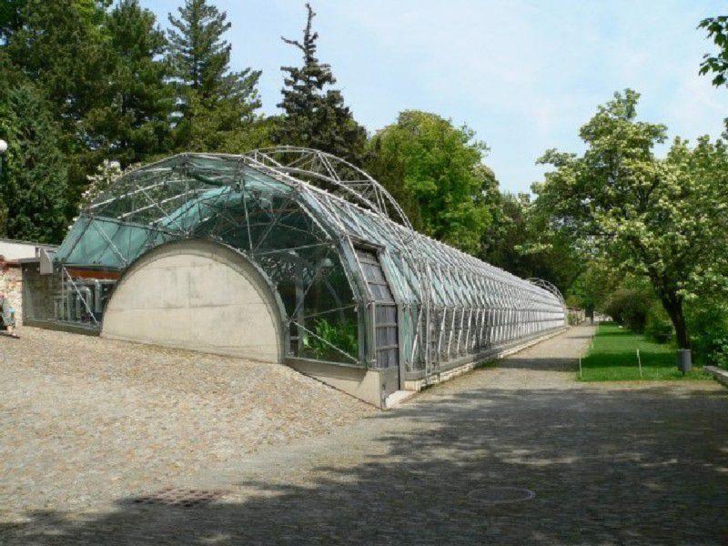 Оранжерея в Пражском граде 1